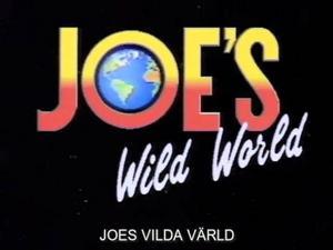 Joe vilda varld 1-4 / Дикий мир Джо (JOE, Aktuell Rapport) [2002 г., Gonzo, Anal Sex, Cum shots, Blowjob, Masturbate]